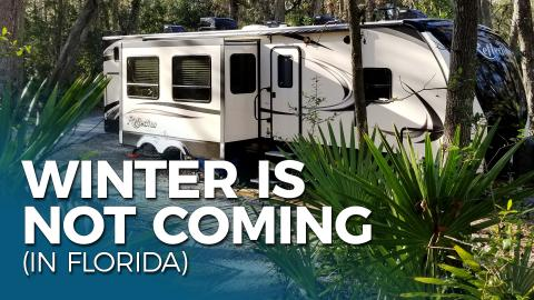 Wintering in Florida